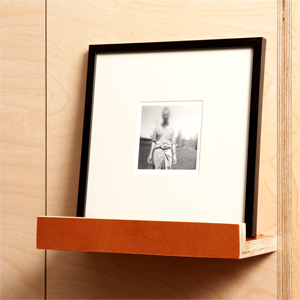 Prefinished plywood picture shelf