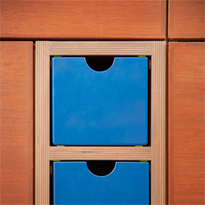 Walnut doors and stained plywood frame with inset metal drawers